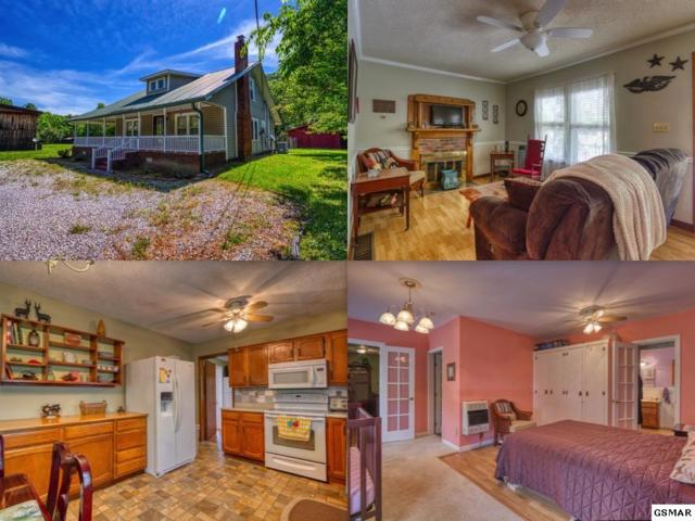 3896 Cosby Hwy, Cosby, TN 37722 (#222742) :: Prime Mountain Properties