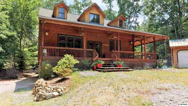 3350 Rocky Ridge Rd, Cosby, TN 37722 (#222752) :: Colonial Real Estate