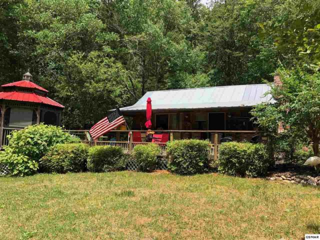 130 Lost Lake Rd, Cosby, TN 37722 (#222763) :: Colonial Real Estate