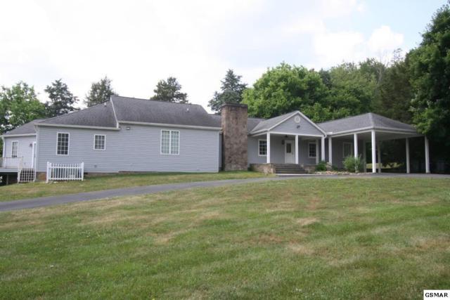 119 Hazel Dr, Sevierville, TN 37862 (#222778) :: Prime Mountain Properties
