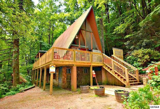 913 Ski Mountain Road, Gatlinburg, TN 37738 (#222786) :: Four Seasons Realty, Inc