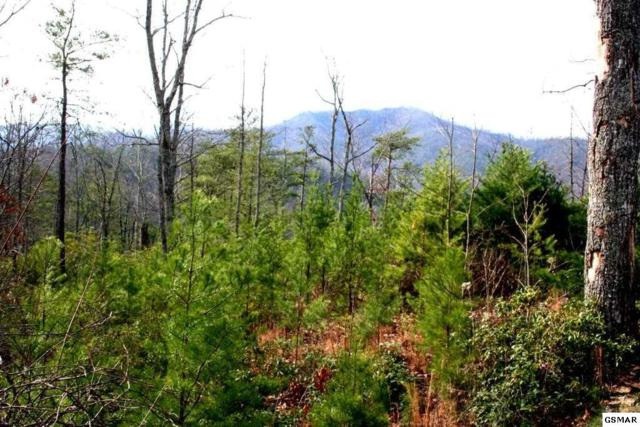 Lot Lot 36 Morning Dove Way, Sevierville, TN 37862 (#222794) :: The Terrell Team