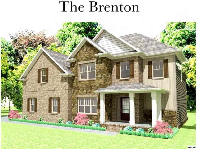 253 Bluff Shadows Ln., Seymour, TN 37865 (#222796) :: Prime Mountain Properties
