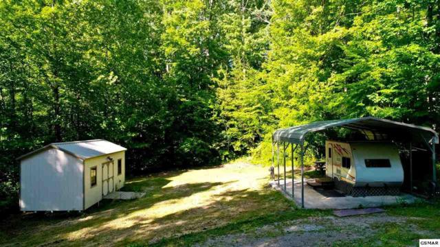 LOTS 37 & 38 Mtn Laurel Way, Cosby, TN 37722 (#222827) :: Colonial Real Estate