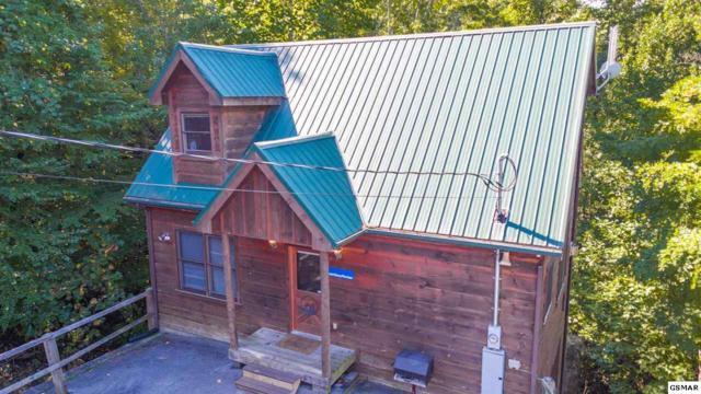 "1825 Cherry View Lane ""Hoot Owl Hollo, Sevierville, TN 37876 (#222842) :: Prime Mountain Properties"