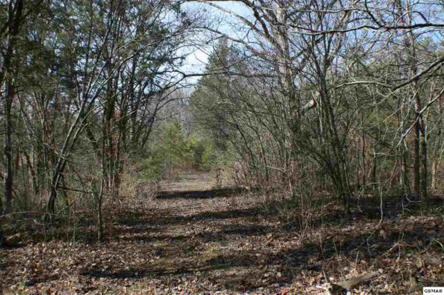Tract 6 Sevierville Pike Gondola Drive, Knoxville, TN 37920 (#222854) :: Colonial Real Estate