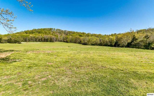 Hinchey Hollow Road, Jefferson City, TN 37760 (#222855) :: Four Seasons Realty, Inc