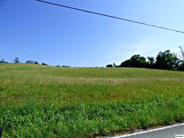 Lots 2&3 Owl Hole Gap Rd., Rutledge, TN 37861 (#222861) :: The Terrell Team