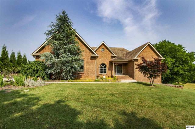 1430 Piedmont Rd, New Market, TN 37820 (#222947) :: Prime Mountain Properties