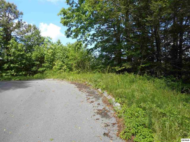 Lot 14 Eagle Trail, Gatlinburg, TN 37838 (#222963) :: Four Seasons Realty, Inc