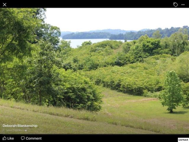 Lot 59 Sanctuary Shores Way, Sevierville, TN 37876 (#222968) :: The Terrell Team