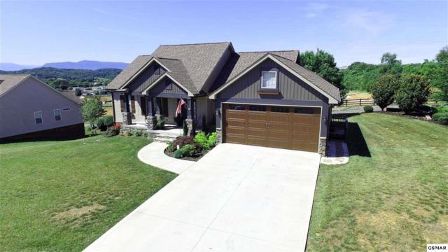 2806 Alden Glenn Ct Chapel View Ct, Sevierville, TN 37876 (#222980) :: Prime Mountain Properties