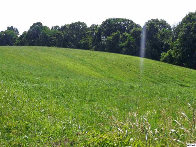 Par 030.03 Brotherton Road Par 030.03 Barb, Jefferson City, TN 37760 (#222981) :: Four Seasons Realty, Inc