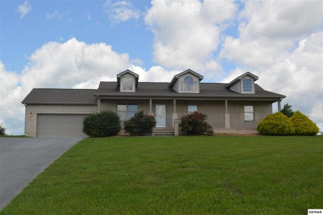 724 Tuckahoe View Trl, Kodak, TN 37764 (#222995) :: Prime Mountain Properties