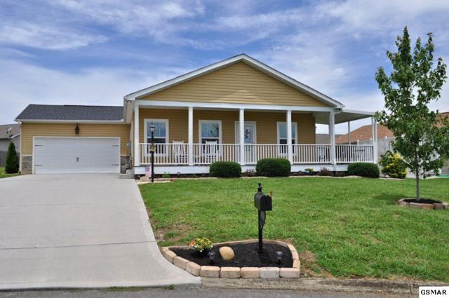 1408 Abbie Rae Drive, Sevierville, TN 37876 (#223011) :: Billy Houston Group