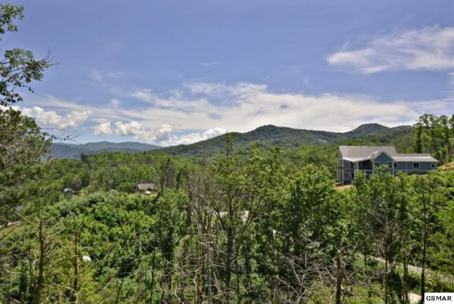 1004 Elm Road, Gatlinburg, TN 37738 (#223015) :: Prime Mountain Properties
