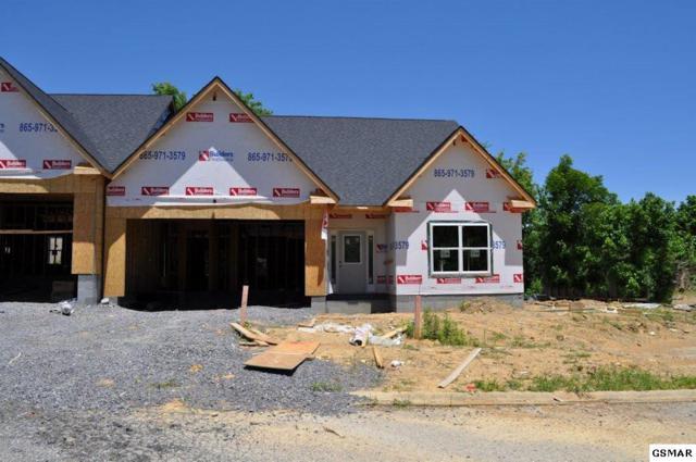 1061 Woullard Way, Sevierville, TN 37876 (#223021) :: Billy Houston Group