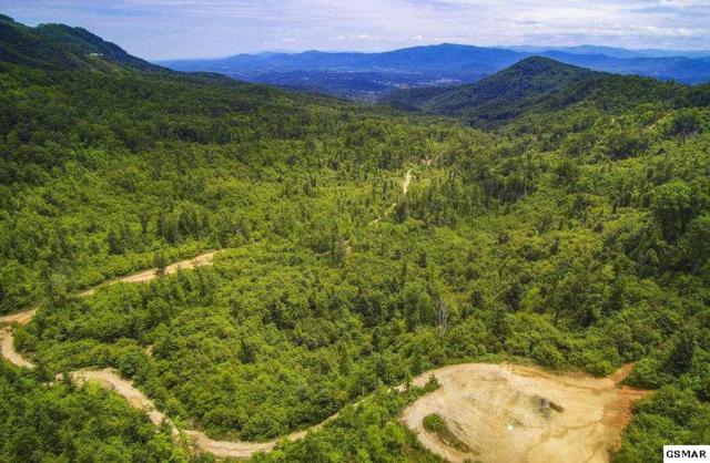 Alpine Drive, Sevierville, TN 37862 (#223032) :: Prime Mountain Properties