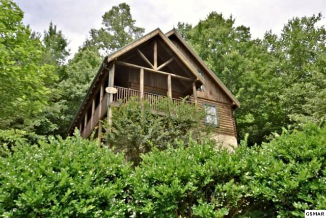 "4407 Forest Vista Way ""Black Paw"", Pigeon Forge, TN 37863 (#223042) :: Colonial Real Estate"