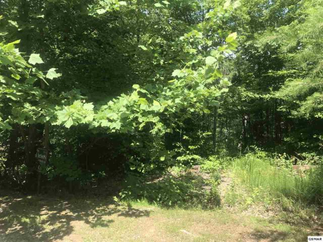 Lot Lot 5-E Stackstone Rd, Sevierville, TN 37862 (#223043) :: Colonial Real Estate