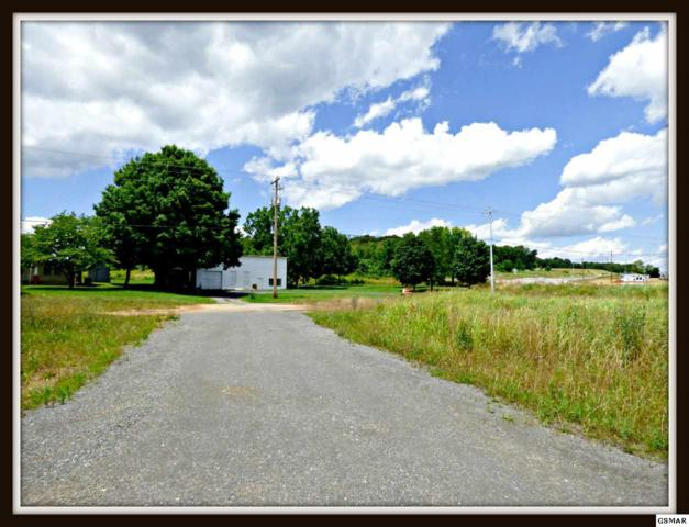 R 003.00 Valley Home Rd., White Pine, TN 37890 (#223045) :: Colonial Real Estate
