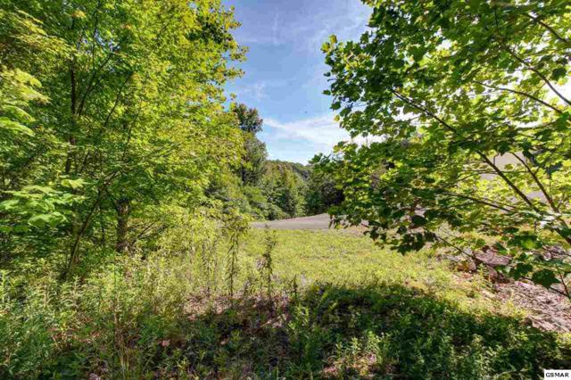 Lot 169E Jones Creek Lane, Sevierville, TN 37876 (#223046) :: Prime Mountain Properties