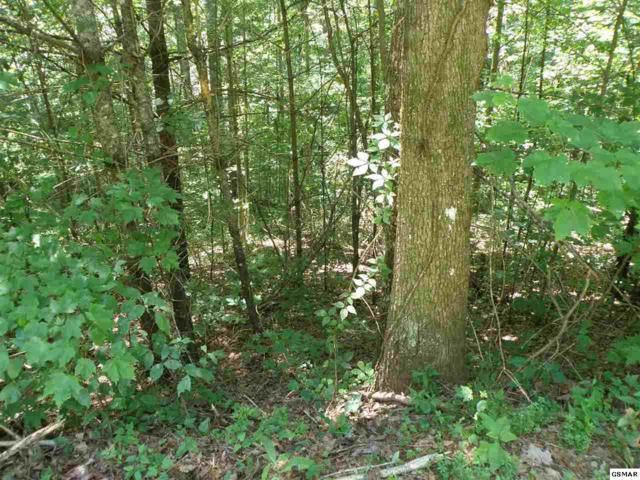 Lot 11-C Mountain Rest Way, Sevierville, TN 37876 (#223055) :: Tennessee Elite Realty