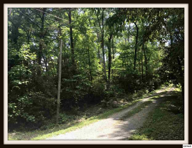 Lot 99 Ginseng Way, Sevierville, TN 37862 (#223057) :: Four Seasons Realty, Inc