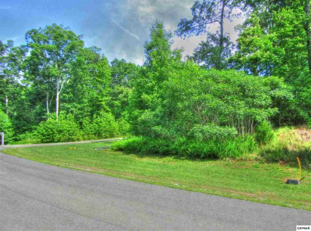 Lot 205 E Shore Dr, Rockwood, TN 37854 (#223074) :: Four Seasons Realty, Inc