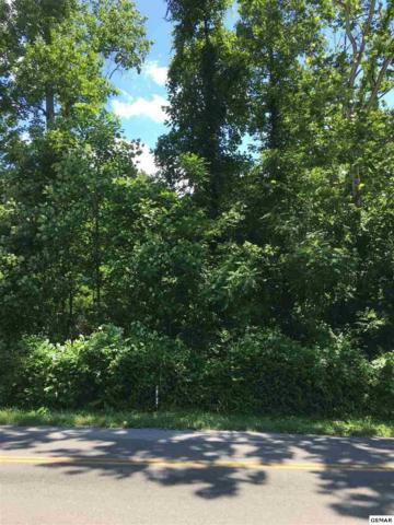 Mcgaha Hollow, Dandridge, TN 37725 (#223075) :: Prime Mountain Properties