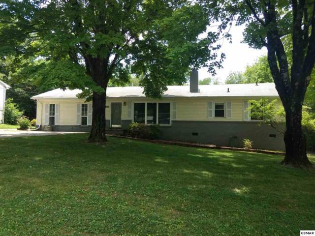 4404 Mcdonald Rd, Knoxville, TN 37914 (#223093) :: Prime Mountain Properties