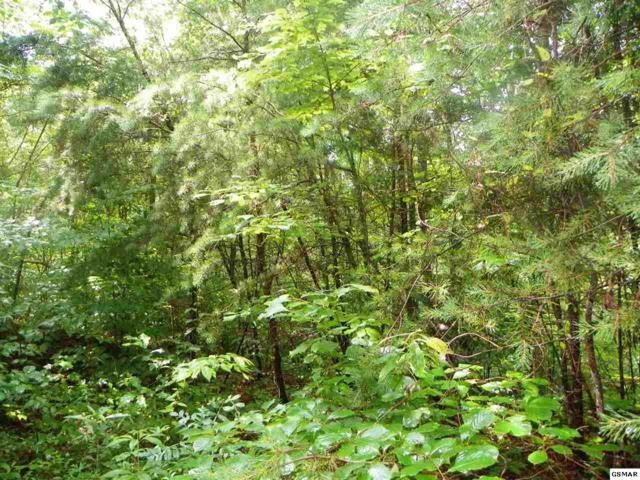 Lot# 36 Red Cedar Lane, Sevierville, TN 37876 (#223099) :: Prime Mountain Properties
