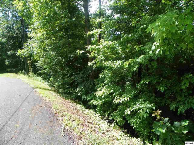 Lot# 50 Red Cedar Lane, Sevierville, TN 37876 (#223100) :: Prime Mountain Properties