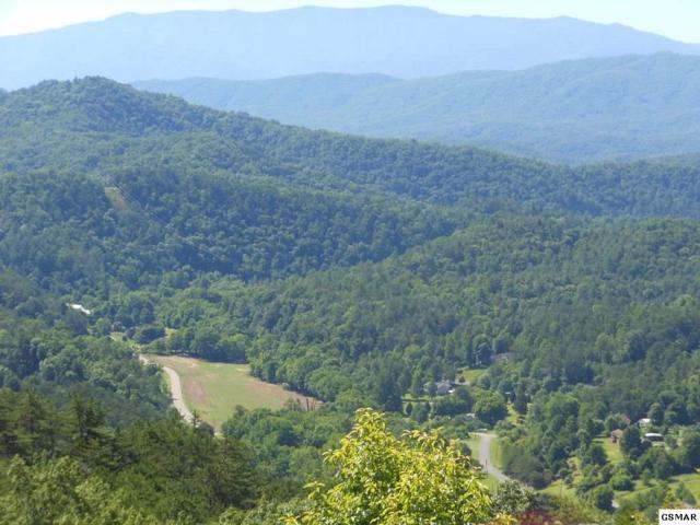 Lot 18 Autumn Ridge Way, Sevierville, TN 37876 (#223128) :: Prime Mountain Properties