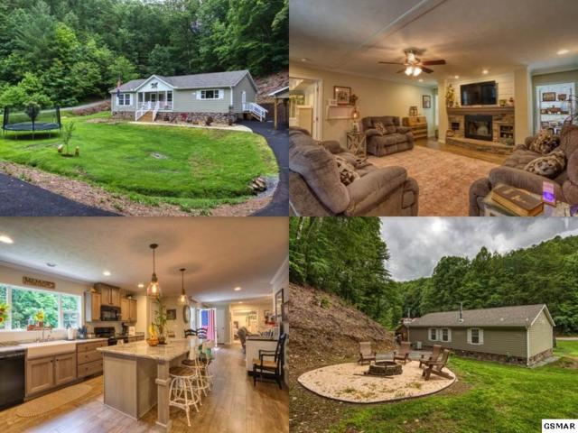 3846 Knight Hollow Rd, Sevierville, TN 37876 (#223139) :: Prime Mountain Properties