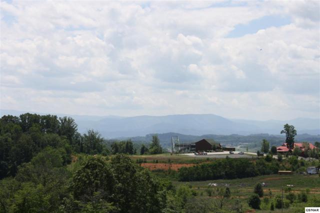 Lot 11 Smokey View Drive, Kodak, TN 37764 (#223155) :: Prime Mountain Properties