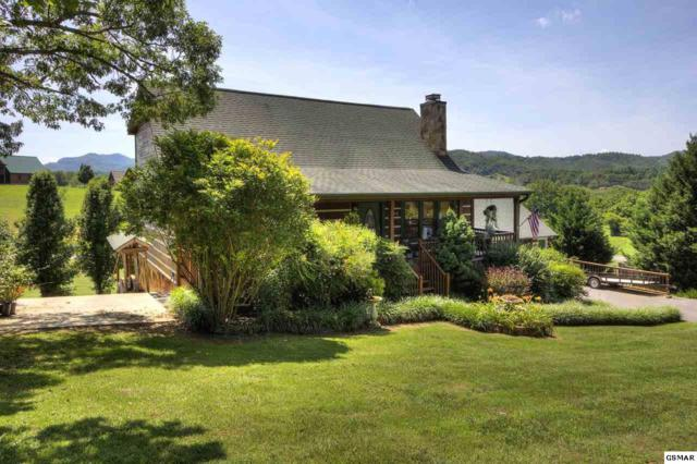 3310 Robeson Rd., Sevierville, TN 37862 (#223165) :: Prime Mountain Properties
