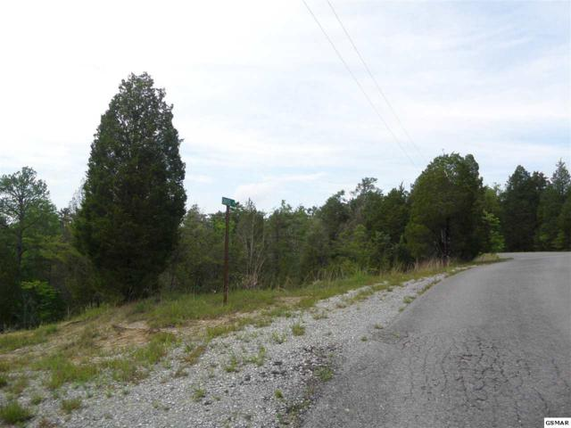 Lot 10 Chapel Road, Sevierville, TN 37876 (#223167) :: Four Seasons Realty, Inc