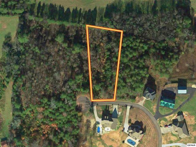 Lot 12 Pinnacle Drive, Dandridge, TN 37725 (#223169) :: Prime Mountain Properties