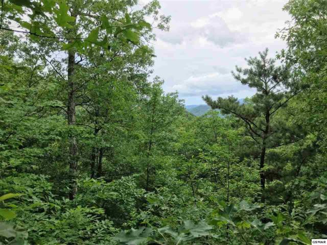 Lot 27 Aryel Overlook Way, Sevierville, TN 37862 (#223171) :: Four Seasons Realty, Inc
