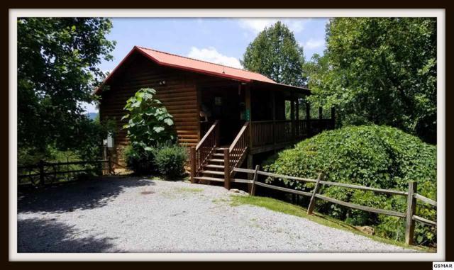 "2546 Bobcat Way ""Honey Bear"", Sevierville, TN 37862 (#223172) :: Prime Mountain Properties"