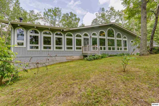 3147 Stepping Stone Drive, Sevierville, TN 37862 (#223177) :: Prime Mountain Properties