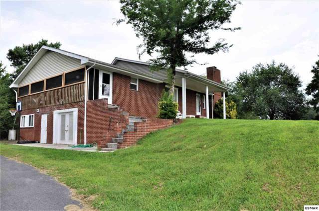 936 Wheeler Rd, White Pine, TN 37890 (#223179) :: Colonial Real Estate
