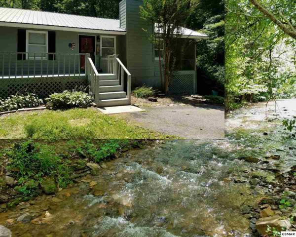 3049 N Clear Fork Rd, Sevierville, TN 37862 (#223190) :: Four Seasons Realty, Inc