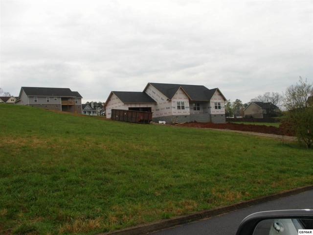 2109 Kings View Loop, Seymour, TN 37865 (#223196) :: Billy Houston Group