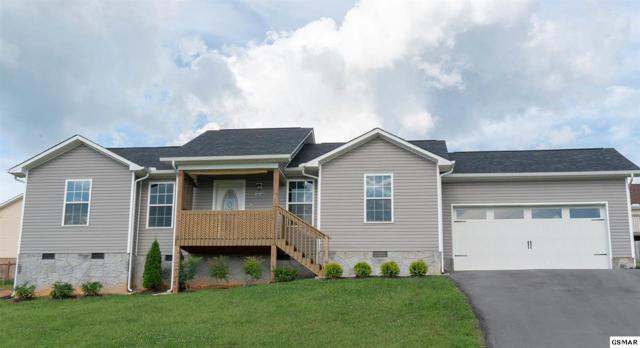 1314 Lauren Drive, Jefferson City, TN 37760 (#223223) :: Prime Mountain Properties
