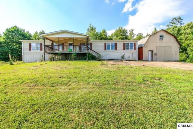 1328 Black Rd, Dandridge, TN 37725 (#223238) :: Prime Mountain Properties