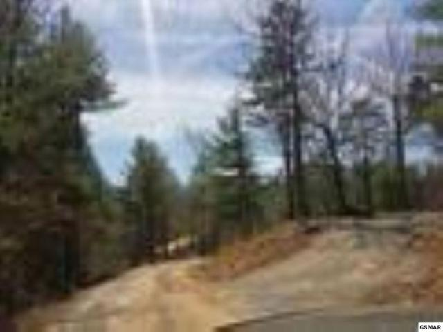 Lot 23 Bourne Way, Sevierville, TN 37876 (#223244) :: Colonial Real Estate