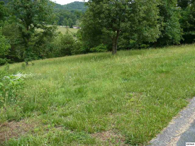 Lot #10 J.H. Headrick Drive, Sevierville, TN 37862 (#223247) :: Colonial Real Estate