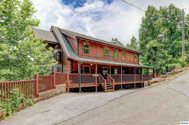 725 Big Bear Ridge Road, Gatlinburg, TN 37738 (#223254) :: The Terrell Team